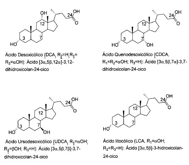esteroles y esteroides